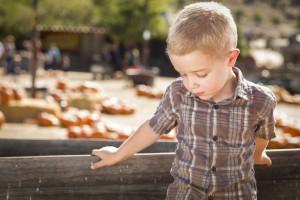Inquinamento e autismo: nuove evidenze …